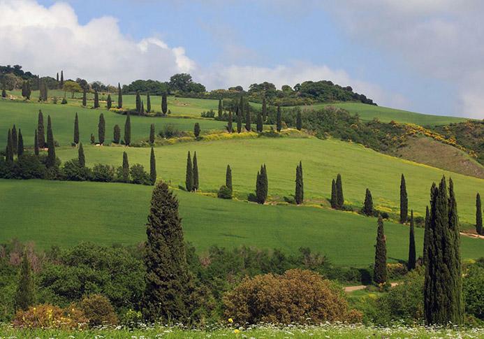 минеральные источники в Италии Термы Сан Джулиано