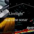 リアルタイムソナー『LiveSight』リリース