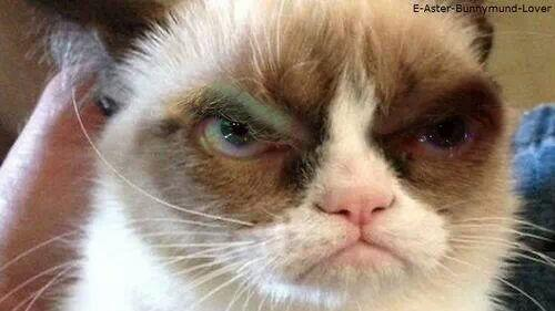 Grumpy Who?