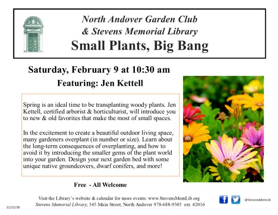 StevensMemLib Small Plants, Big Bang Flyer.jpg
