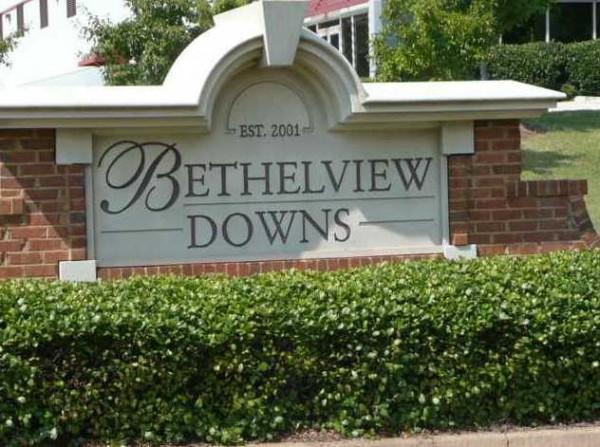 Bethelview Downs Cumming GA (3)