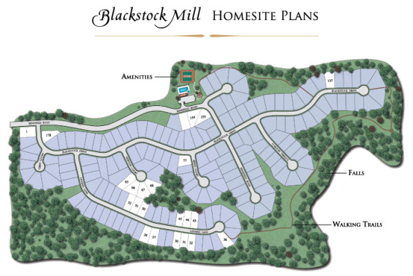Neighborhood Site Plan Blackstock Mill