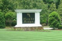 Estate Homes In Hawks Ridge Ball Ground GA