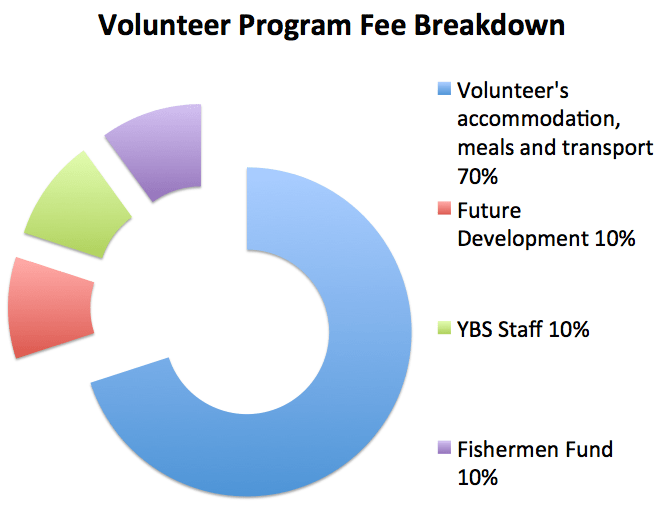 affordable volunteer program fee, north bali reef conservation, volunteer in bali, bali volunteering program