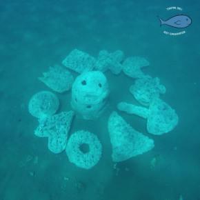 bali volunteering program - marine conservation program bali