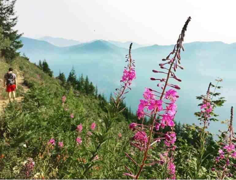 Mt Defiance August