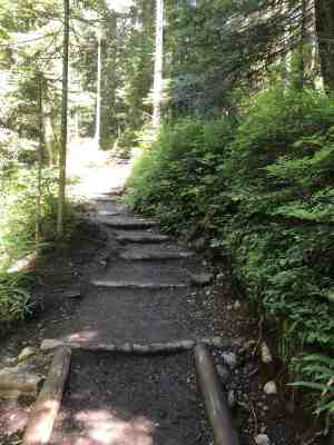 Once the stairs start, they don't stop until the top near Franklin Falls