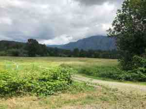 Beautiful Meadow and Mt Si View opposite entrance to dog park