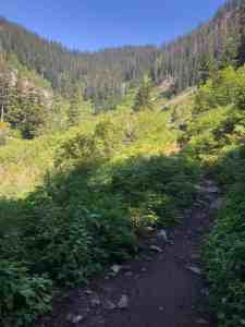 View to Hemlock Pass after Denny Creek crossing