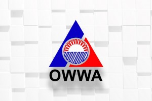 Repatriated OFWs from Kuwait to get livelihood aid from OWWA