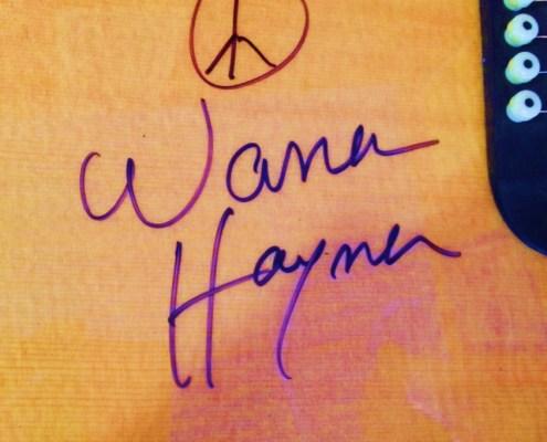 Warren Haynes Exhibit - Autographed Guitar