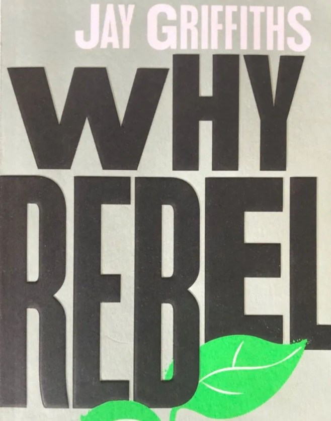 Book cover for Why Rebel