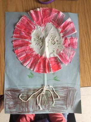kindergarten-plant