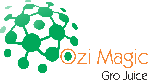 Ozi Magic-1