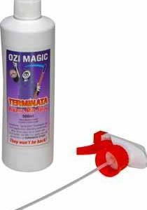 Ozi Magic – Terminata