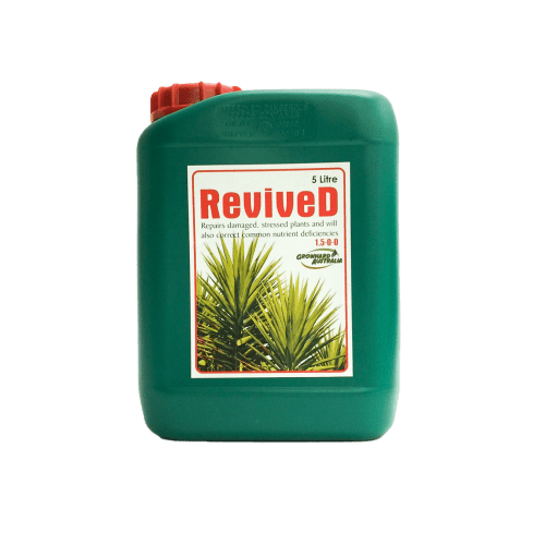 GrowHard – Revived