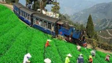 Assam: Special Measures to promote Heritage Hill Railways
