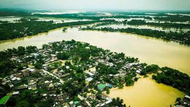Photo of Assam Flood:  toll at 12, and 4.5 lakh people affected