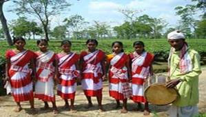 Census 2011 Language Data: Assam records decline in percentage of Assamese, Bodo, Rabha and Santhali speakers