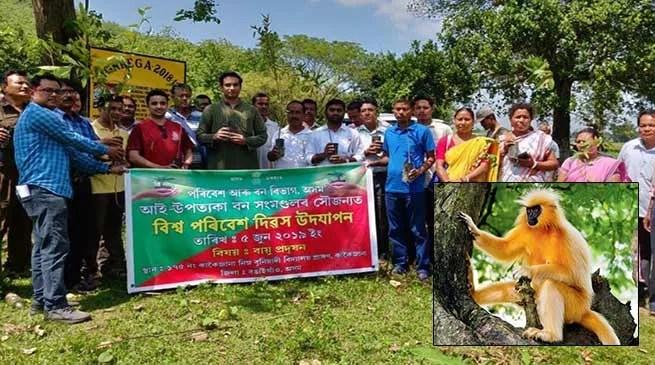 Assam: Bongaigaon Admin in crusade to save golden langurs
