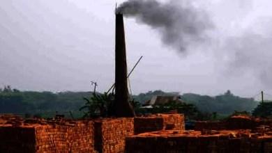 Assam: Brick kilns start functioning maintaining social distancing in Hailakandi