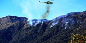 Nagaland: Operation continue to control Dzukou Valley wildfire