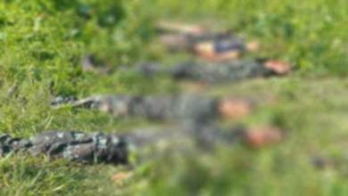 Assam: 6 DNLA militants killed in encounter with security forces