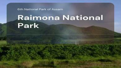 Raimona Assam's new national park with rich flora and fauna