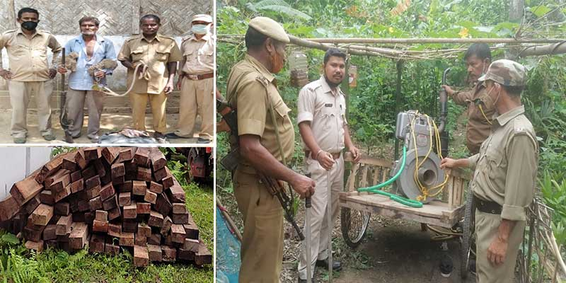 Timbers, sand, generator sets seized by forest personnel at different places of Assam