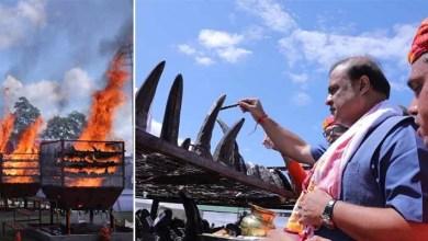 World Rhino Day: Assam CM burns 2479 seized Rhino horns at Kaziranga