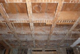 Mold-Ceiling-After