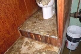 sewage-bathroom