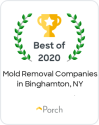 best-of-mold-removal-porch