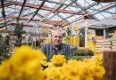 Blumen- und Gartencenter Denecke: Denn der Frühling kommt trotzdem
