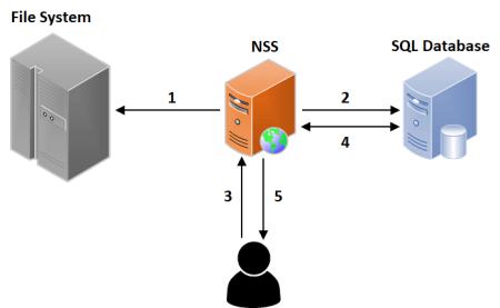 Illustration of NSS and SQL Server connections