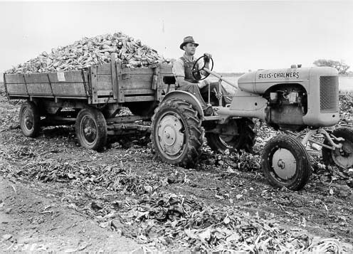 Andrew Mair hauled beets in this Fort Collins History Connection photo.