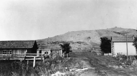 "Street scene in Stout, Colorado . The text on the library file states, ""Street scene in Stout, Colorado, horse stalls in left foreground, chicken house in the back, part of Wather Ranch."" (Call # X-13705)"