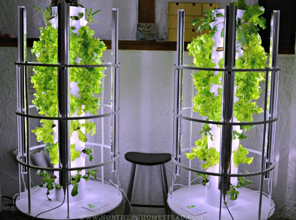 Image result for tower garden