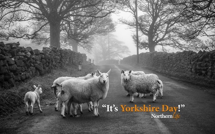 It's Yorkshire Day