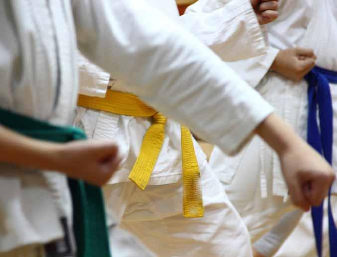Pendle Karate