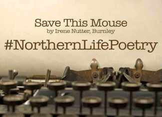 Save This Mouse