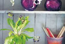 How to make a cabbage vase