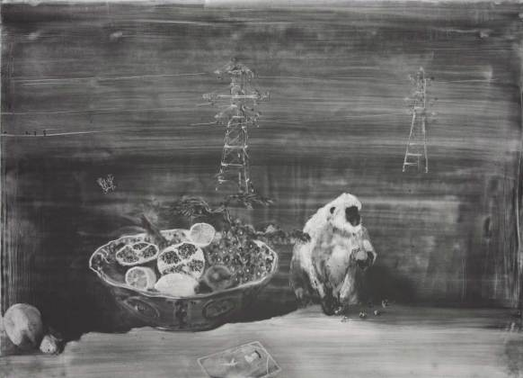 Christopher Cook Forbidden Fruit 72 x 102cm Graphite on coated paper