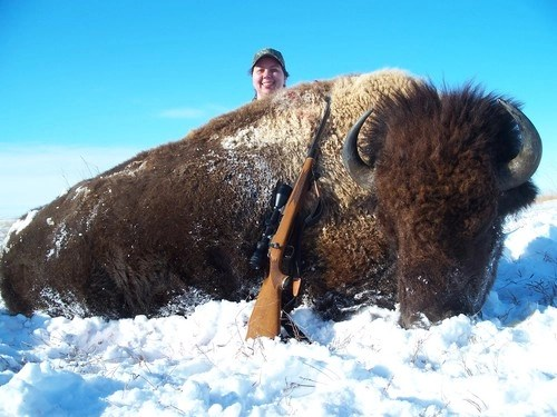 Buffalo hunting in South Dakota