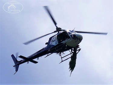 Police Chopper with Canabis Plant2