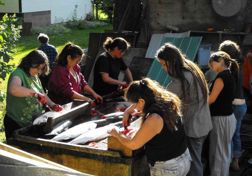 A table with three or four women on either side gutting sockeye salmon. They are outdoors, and have blood on their hands.
