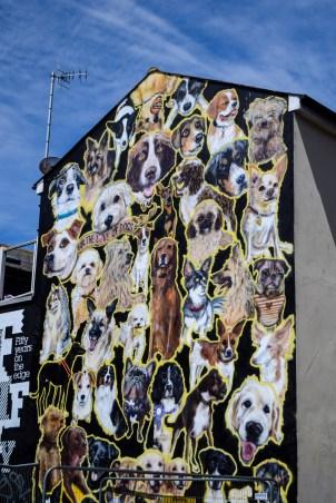 Brighton_street art-4