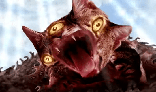 """Run The Jewels release """"Meowpurdy"""" video. The track comes off 'Meow The Jewels"""