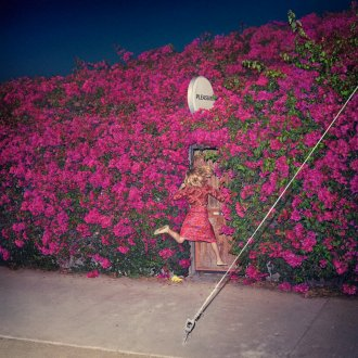 review of Feist's new LP 'Pleasure', now out