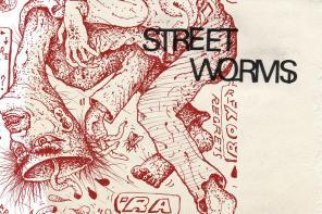 Street Worms' by Viagra Boys, album review by Leslie Chu.